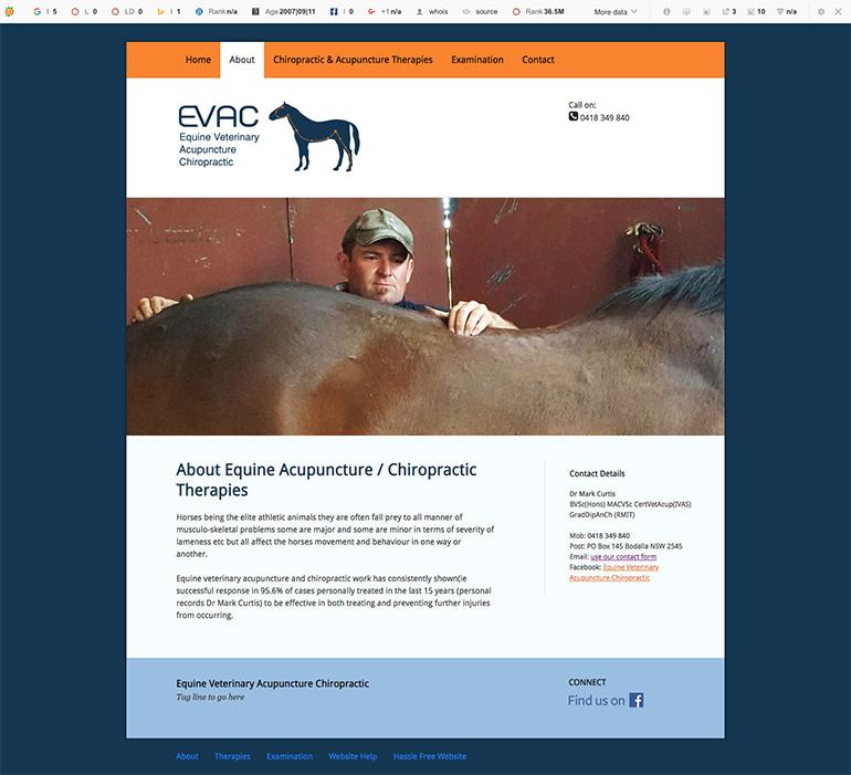 horse vet website